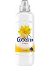 Coccolino aviváž Narcis 925 ml